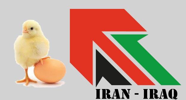 رفع ممنوعیت صادرات مرغ و تخم مرغ به کشور عراق